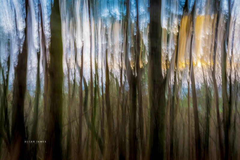Monet-Wood-Photographer-bridgend-cardiff